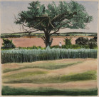 Tree, River, Field thumb